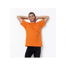 Sg Mens Heavyweight T-shirt In Various Colours