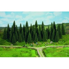 Fir Trees With Planting Pins
